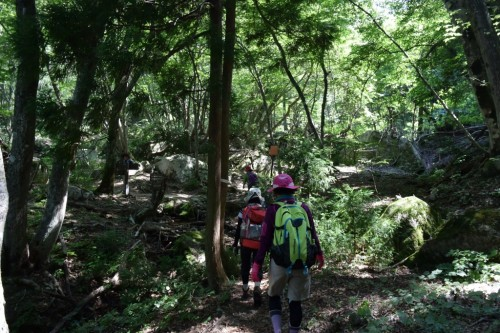 滋賀県・八つ淵の滝トレッキング⑲