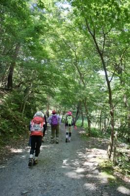 滋賀県・八つ淵の滝トレッキング③