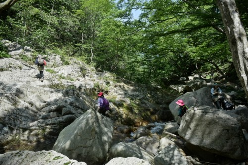 滋賀県・八つ淵の滝トレッキング⑨