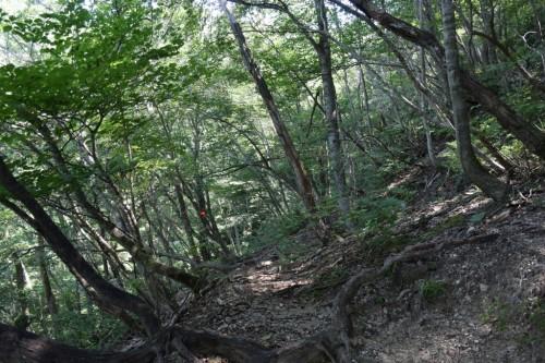 滋賀県・八つ淵の滝トレッキング⑱