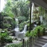 シンガポール風水ツアー52 グランド・ハイアット 裏の滝