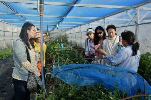 宙SORA 沖縄風水講座⑲ 糸満の有機ファーム