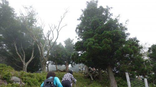 19-黄金山神社風水ツアー 山頂から手を振る