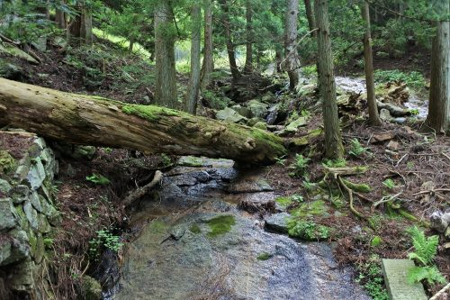 7-黄金山神社風水ツアー 登山口へ向かいます
